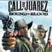 Call of Juarez: Bound in Blood Скриншоты